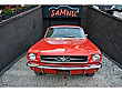 ŞAMNU  DAN 1965 FORD MUSTANG COUPE Ford Mustang - 826252