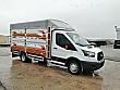 AKSOY OTOMOTİV A.Ş DEN 2018 FORD TRANSİT 350 ED 170 BEYGİR Ford Trucks Transit 350 ED - 1332755