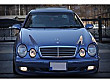 NATUREL den 2001 Mercedes-Benz CLK 230 Komp.Avantgarde Mercedes - Benz CLK CLK 230 Komp. Komp. Avantgarde - 3153432