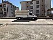 2019 MODEL TEKNO FUL 24 BİNDE TENTELİ Ford Trucks Transit 350 L - 2454143