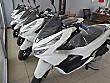 2020 SIFIR KM HONDA PCX Honda PCX - 1301871