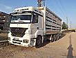 MERCEDES AXOR 3240 Mercedes - Benz Axor 3240 - 1669223