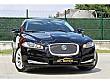AKL MOTORS     dan 2012 MODEL JAGUAR 2.2 DİZEL DEĞİŞENSİZ Jaguar XF 2.2 D - 652371