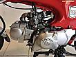 Point motorsdan senetle vadeli Skyteam Skymax 125 - 1498594
