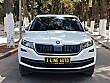 XLİNE AUTO DAN 2019 KODİAQ 1.5TSİ ELİTE DSG CAM TAVAN - HAYALET Skoda Kodiaq 1.5 TSI Elite - 2261090