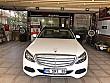 HATASIZ-KUSURSUZ  EXCLUSİVE MERCEDES-BENZ 7-G TRONİC  GARANTİLİ Mercedes - Benz C Serisi C 180 Exclusive