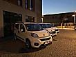 ROYAL FİLO Kiralık Fiorinolar 2020 Model Fiat Fiorino - 4579308