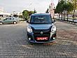 SAFARİ OTO DAN 2014 DOBLO 1.3 M JET PREMİO BLACK KAZASIZ FIAT DOBLO COMBI 1.3 MULTIJET PREMIO BLACK - 2457932