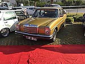ATOM OTOMOTİV DEN 1969 MODEL 115 MERCEDES BENZ Mercedes - Benz 115 115