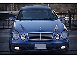 NATUREL den 2001 Mercedes-Benz CLK 230 Komp.Avantgarde Mercedes - Benz CLK CLK 230 Komp. Komp. Avantgarde