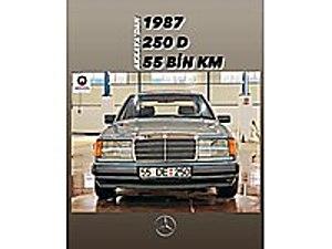 AKKAYA OTOMOTİVDEN 1987 250 D W124 Mercedes - Benz Mercedes - Benz 250 D